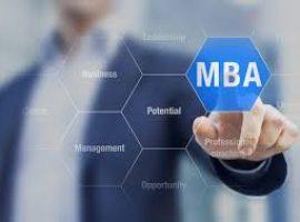 MBA Tezi