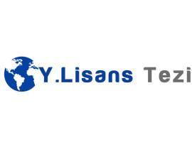 Y.Lisans Tezi